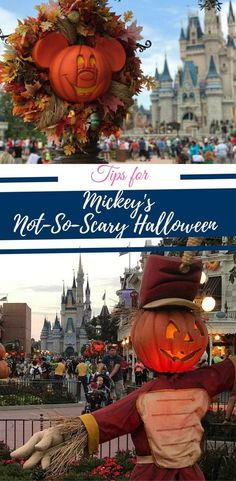Tips For Mickey S Not So Y