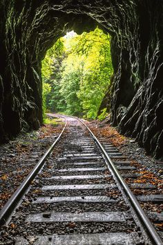 In The Tunnel is a photograph by Debra and Dave Vanderlaan. The rain came down all night, so in the morning, the mist still clings to the trees and in the air, deep in the Smoky Mountains. This railroad tracks is in the Blue Ridge mountains of North Carolina between the small towns of Murphy and Andrews. The line is no longer used but continues to be maintained in hopes of the train coming back. Source fineartamerica.com