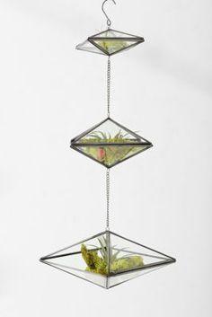 Magical Thinking Triple-Tiered Geo Hanging Terrarium