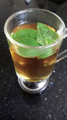 Peppermint tea with fresh basil! Perfect at any time of the day! Peppermint Tea, Fresh Basil, Nutrition, Meals, Healthy, Mint Tea, Meal, Food, Yemek