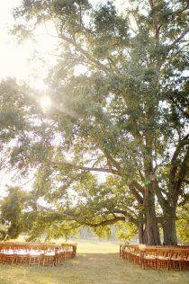 Big Oak Plantation, A Private Property in Senoia, Georgia