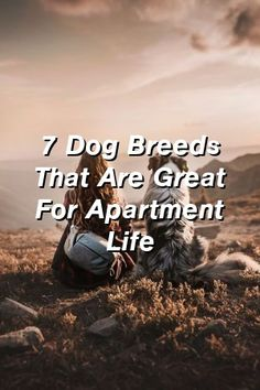 Baby Overalls Speak: 7 Dog Breeds That Are Great For Apartment Life Puppy Training Tips, Training Your Dog, Potty Training, Crate Training, Baby Overalls, Large Dog Breeds, Large Dogs, Homemade Dog, Dog Names