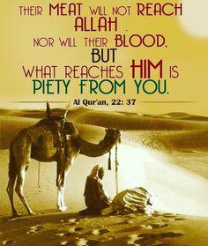 #hajj2015  #hajjmubarak #eiduladha www.alraheemacademy.weebly.com.