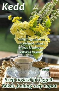 V60 Coffee, Nap, Herbs, Vegetables, Humor, Humour, Herb, Vegetable Recipes, Funny Photos