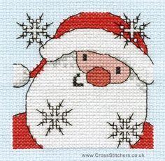 Santa Close Up - Christmas Fun Mini Cross Stitch Kit- DMC