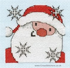 Santa Close Up - Christmas Fun Mini Cross Stitch Kit- DMC