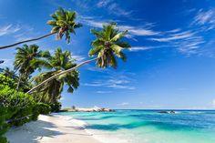 Nächster Stop: Dominikanische Republik - wenn ihr mehr erfahren wollte dann folgt uns auf www.journey-impressions.de