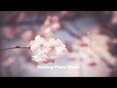 피아노 앤(Piano Ann) - The love