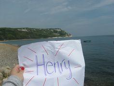 Henry in Dorset
