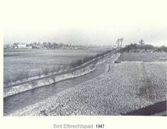 1947 - St. Elbrechtspad met links de Eschpolder en rechts de polder Kralingen