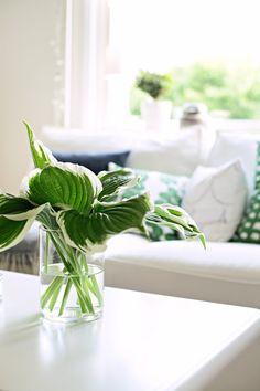 Hosta bouquet