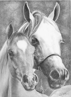 «Mother and Foal» de Karen Townsend