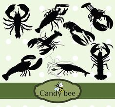 Shrimp-Lobster-Silhouette Clip art  Instant by CandyBeeDesigns
