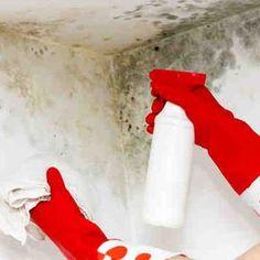 Cómo quitar manchas de moho #tips #tutorial #limpieza