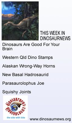 This Week in Dinosaurnews. Dinosaurs Are Good For Your Brain * Western Qld Dino Stamps * Alaskan Wrong-Way Horns * New Basal Hadrosaurid * Parasaurolophus Joe * Squishy Joints. http://www.dinosaurnews.org/ #dinosaurs #news #fossils #palaeontology