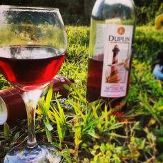 Hatteras Red, Sweet muscadine wine from Duplin Winery in NC -my absolute favorite!