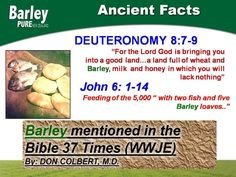 Bible is our guide. We are blessed to have Barley as God's gift Barley Grass, Cancer Fighter, Green Powder, Milk And Honey, Superfood, Benefit, Detox, The Cure, Blessed