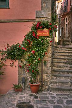 ~Corniglia ,ItalyCorniglia is a frazione of the commune of Vernazza in the province of La Spezia, Liguria, northern Italy~