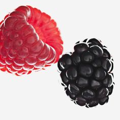 Our health and beauty corner brings to you edible Raspberry! Wedding Clutch, Wedding Shoes, Beauty Corner, Full Hair, Party Shoes, Health And Beauty, Raspberry, Style Inspiration, Ballet Shoes