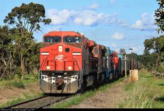 RailPictures.Net Photo: 9055 Rumo/ALL AC44i at Ibaté, Brazil by Lucas MR