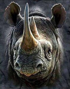 Pin this post and visit the website. Tags: rhino rhinoceros save the rhino baby rhino white rhino african rhino safari animals baby animals cute animals cute baby animals black rhino wildlife Safari Animals, Nature Animals, Animals And Pets, Cute Animals, Baby Animals, African Rhino, African Animals, Majestic Animals, Animals Beautiful