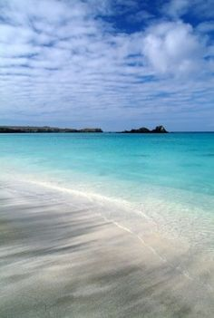 Galapagos South America  | Top 10 Famous Islands for Vacation
