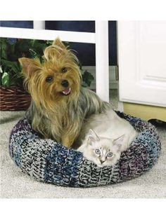 Easy Pet Bed Free Crochet Patterns A set of Straightforward Pet Mattress Free Crochet Patterns. Crochet these pet mattress to your cats or canine that your little fur relations can't re. All Free Crochet, Crochet Home, Crochet Gifts, Dog Crochet, Pet Beds, Crochet Accessories, Crochet Animals, Crochet Patterns, Crochet Ideas