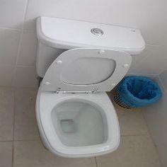Dica para desentupir a sanita ou o vaso sanitário - Util Dicas   Dicas e Truques úteis