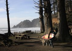 Oregon's 10 most popular state parks in 2017 include Oswald West State Park, which is home to Short Sand Beach that features a cliff-walled beach beloved by surfers (and children).