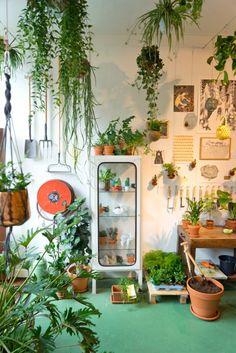 La boutique de plantes Wildernis à Amsterdam via Joelix