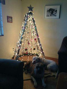 Reuse Ladder & Hula Hoop Christmas Tree Ladder Christmas Tree, Christmas Tree Decorations, Holiday Decor, All Things Christmas, Christmas Crafts, Christmas Villages, Xmas Ideas, Holiday Ideas, Reuse