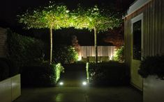 Kind-Hearted Solar Light Home Garden Solar Power Buried Light Stone Shape Under Ground Lamp Outdoor Path Way Garden Decking Ip44 Solar Lamp We Take Customers As Our Gods Led Underground Lamps Lights & Lighting