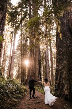 intimate wedding ceremony in the redwood forest adventure wedding photographer intimate wedding ceremony in the redwood forest adventure wedding photographer redwoods national park elopement ww Pre Wedding Photoshoot, Wedding Poses, Wedding Shoot, Wedding Ideas, Wedding Album, Wedding Themes, Wedding Details, Wedding Colors, Intimate Wedding Ceremony