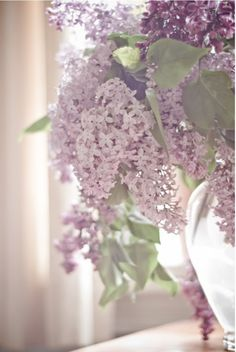 """""""Now that the lilacs are in bloom / She has a bowl of lilacs in her room."""" - T.S. Eliot"""