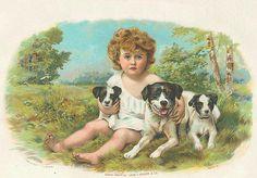 Boy and three dogs