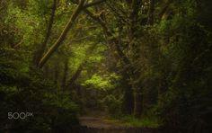 an Irish fairytale by Rudi Moerkl - Meena's Tirith