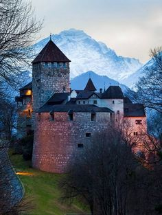 Vaduz Castle, Liechtenstein | by fjmbal