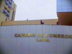Los gallinazos fuera de la Cámara de Comercio de Lima.