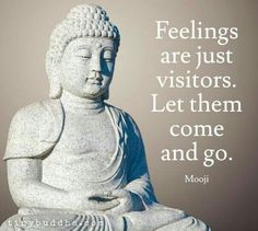 Feeling are just visitors. Let them come and go.