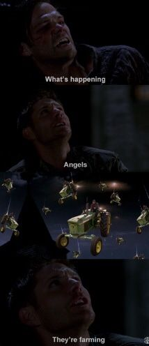 I wonder if the people over at SPN know about our fandom's obsession with tractor angel...