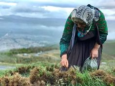 Photo by Rasoul Khorram