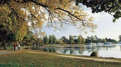 Take in the scenery and abundant birdlife and watch vintage trams rattle along nearby streets as you walk around Lake Wendouree. Best Places To Live, Places To Visit, Victoria Australia, Historical Photos, Outdoor Activities, The Good Place, Melbourne, Scenery, Country Roads