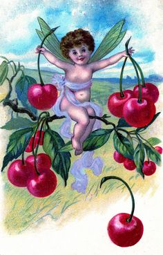 Vintage Clip Art - Adorable Cherry Fairy - The Graphics Fairy Cherry Baby, Cherry Cherry, Cherry Pics, Cherry Tree, Decoupage, Cherries Jubilee, Mermaid Fairy, Vintage Fairies, Blue Fairy