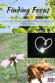 Online photogpraphy classes gave my son confidence and pride during this strange summer. Read all about it on the blog.