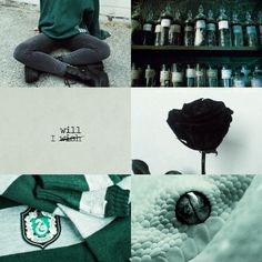 Slytherin Aesthetic || cunning, creative, resourceful, and ambitious.
