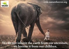 Leave something for the future generations. We should not be leaving a planet which is destroyed by our greed.   Share to create awareness. If each one reaches and teaches one it will make a huge difference.
