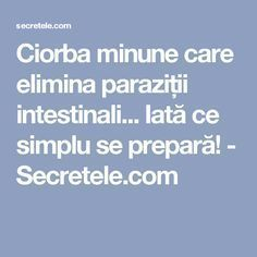 Ciorba minune care elimina paraziții intestinali... Iată ce simplu se prepară! - Secretele.com Herbal Remedies, Natural Remedies, Good To Know, Herbalism, Health Fitness, Wellness, Food, Desserts, Medicine