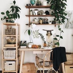 Airey office goals ✨ .  originally posted by @friederikchen  found via @prickleandvine #sandiegoconnection #sdlocals #encinitaslocals - posted by General Pumice Products https://www.instagram.com/sexysucculents_. See more post on Encinitas at http://encinitaslocals.com