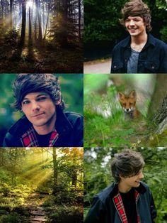 One Direction as mystical creatures; Mermaid!Liam, Angel!Zayn, Snowdragon!Niall, Forestkitsune!Louis and  Woodnymph!Harry