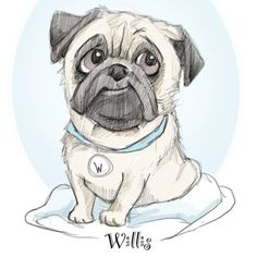 🐾Cuteness alert🐾 Meet Willis, instagram sensation and possibly the cutest pug in the north east. We met at @forbesofkingennie dog fest. I… Cute Pugs, Caricatures, Watercolor Paintings, Pencil, Cartoon, Drawings, Lady, Illustration, Dogs